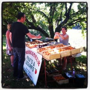 Vente fruits et légumes de Lionel Moins au Lou Pataclet